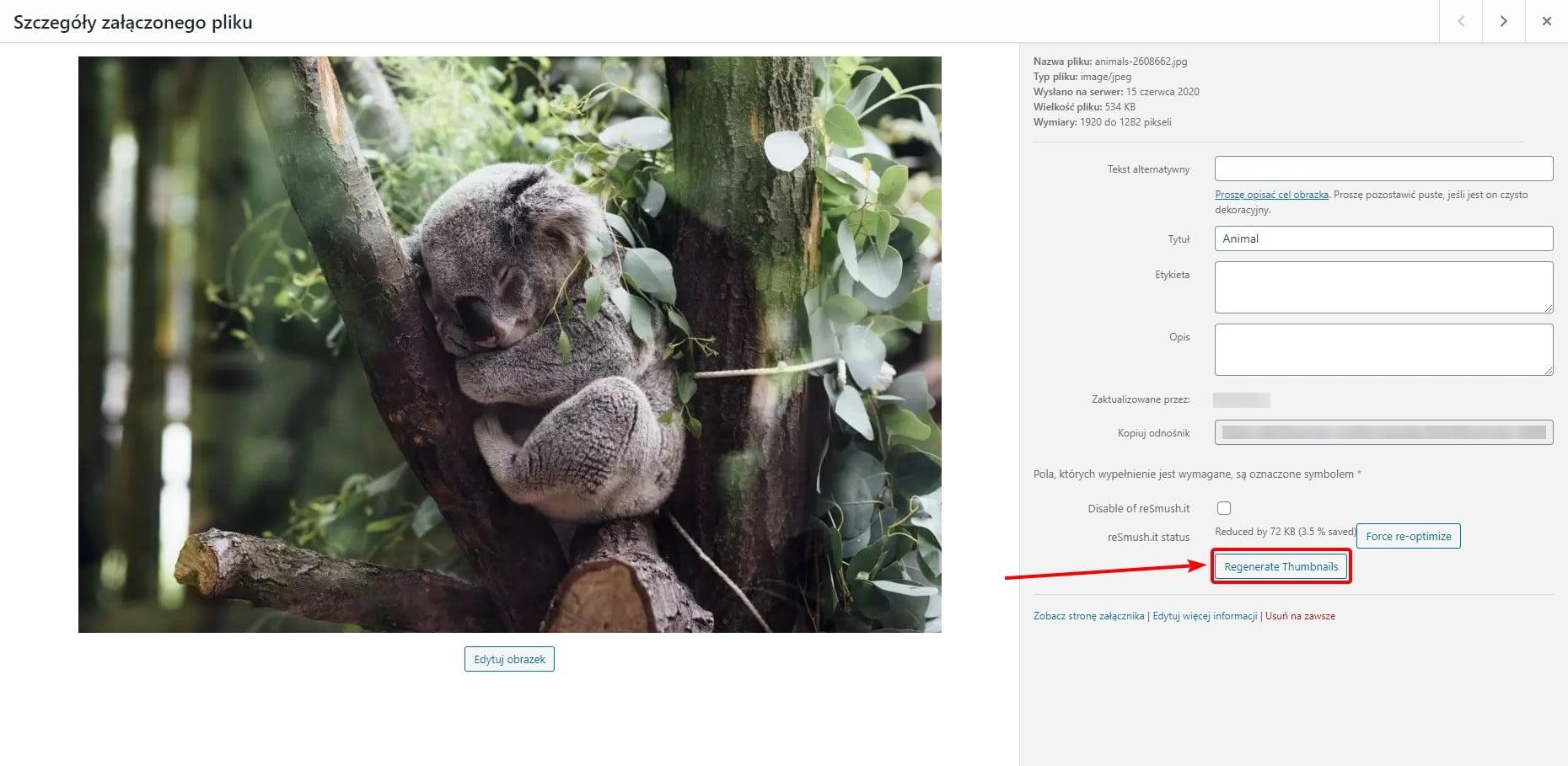 Odnawianie miniaturek - wtyczka WordPress